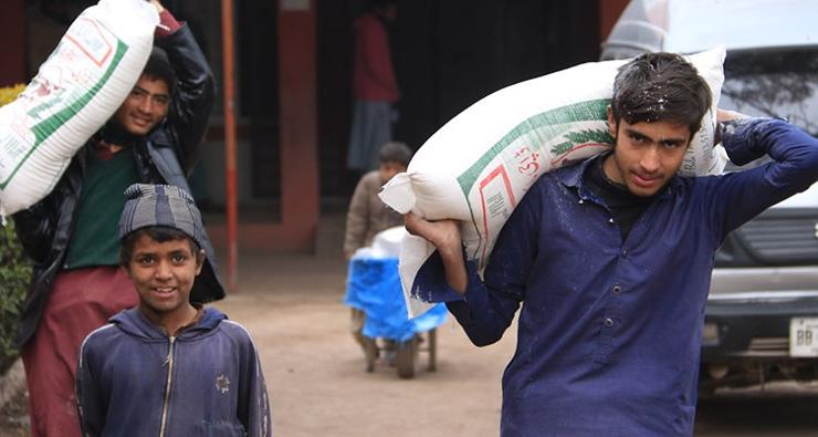 Young men collecting flour for their households who are study participants.